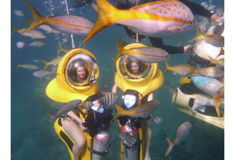 Underwater Shore Excursions