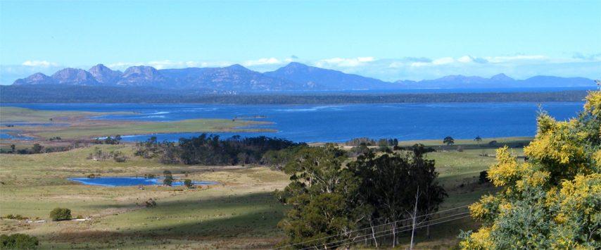 Tasmanian Wine Culture