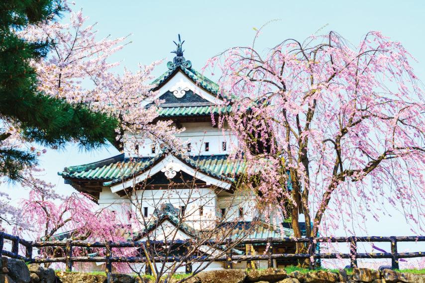 Spring festival at Hirosaki Park | J.D. Andrews