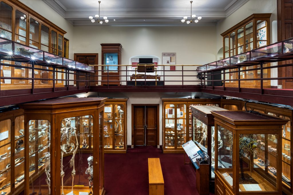 Mütter Museum of The College of Physicians