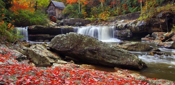 Fall Foliage Outside New England